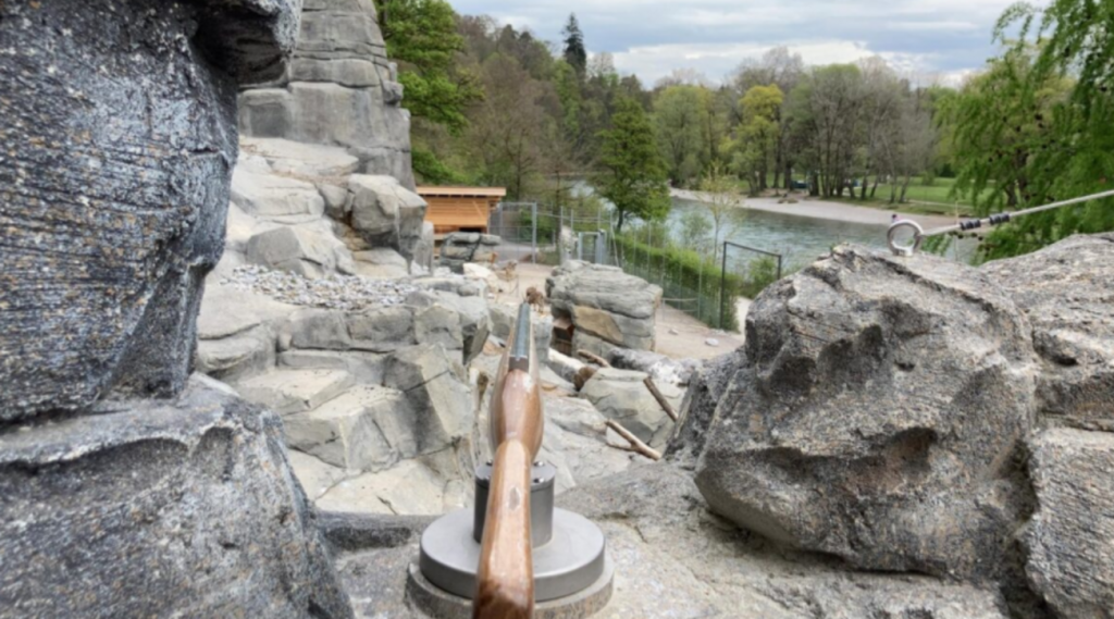 "Bern, in the zoo fake ""shooting"" caribou guns: removed after controversy"