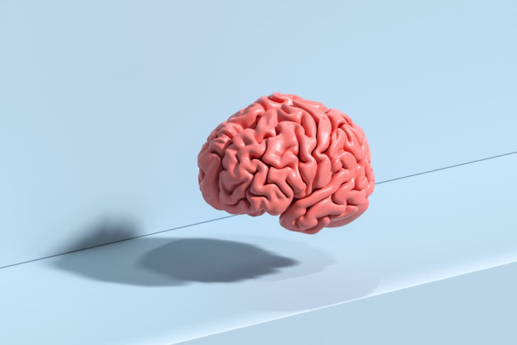 Seven ways to keep your brain healthy
