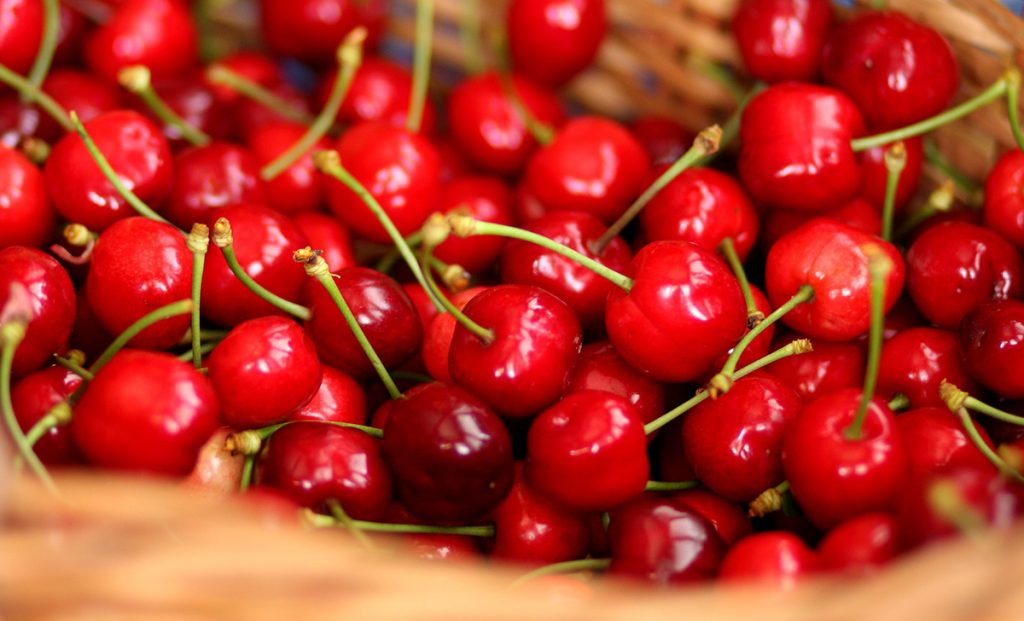 Few people know that in order not to rot the cherry, it is enough just to use this ingenious trick