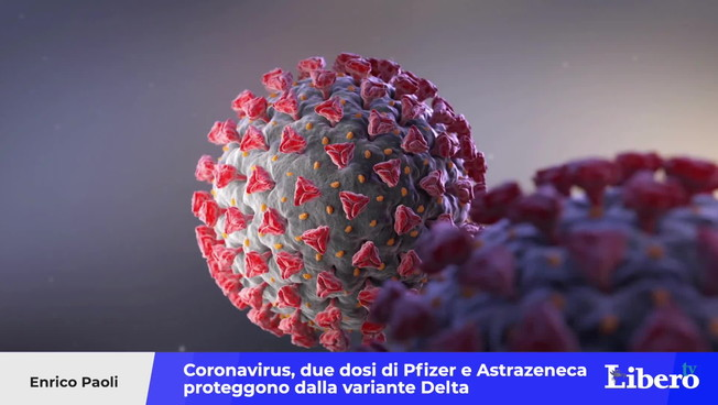 Coronavirus, two doses of Pfizer and Astrazeneca protect against a delta variant: the study that changes the picture