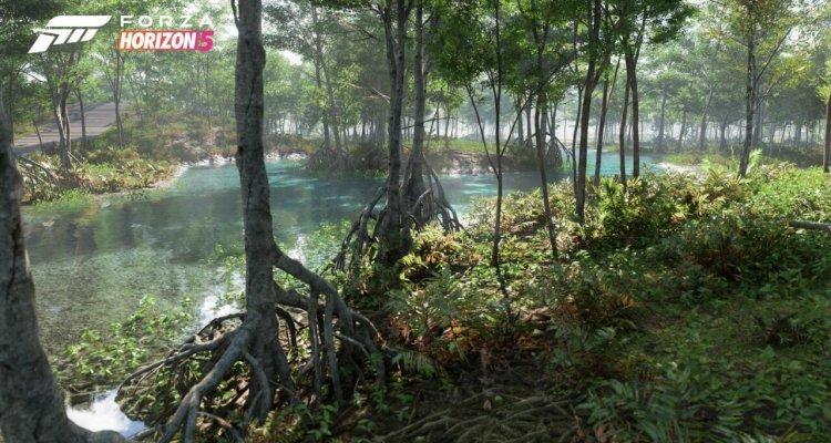Videos and photos reveal 11 biomes, and they are beautiful - Nerd4.life