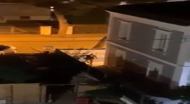 Police surrounded the house and arrested the thieves