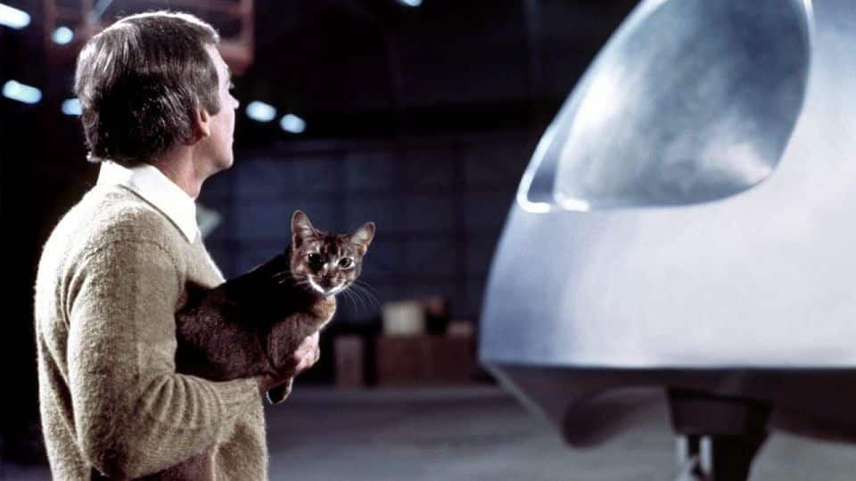 """scene from """"cat from outer space""""."""